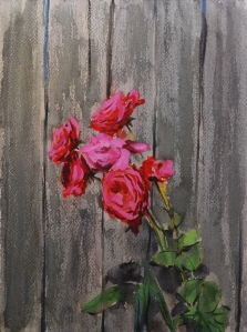 Roses By The Old Wooden Fence