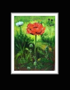 Afghan Poppies Smallj