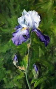 Flower 12 Iris Small