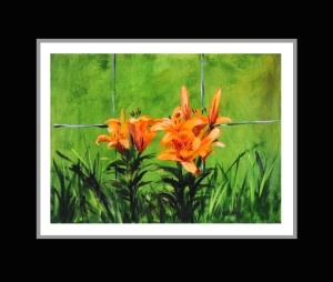 Orange Lilies Small